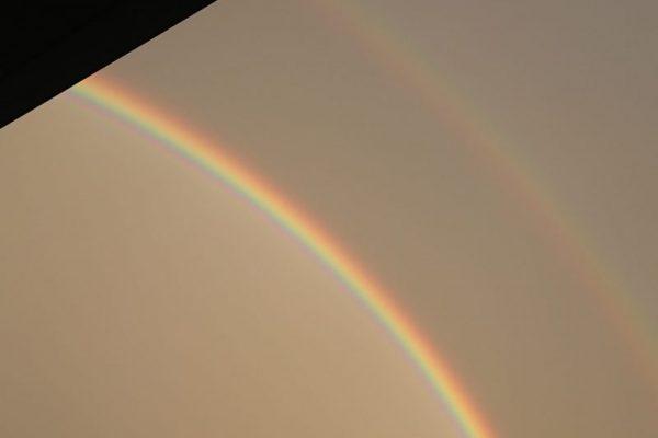 キレイな虹を見ました!